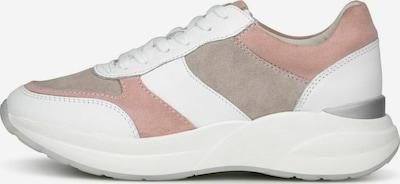 COX Sneaker in taupe / altrosa / weiß, Produktansicht