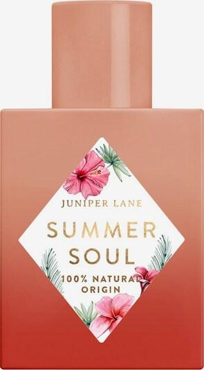 Juniper Lane Fragrance 'Art du Parfum 'Summer Soul' in Transparent, Item view