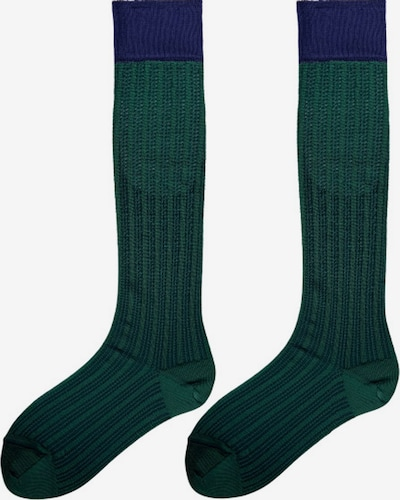 TOO HOT TO HIDE Calcetines hasta la rodilla 'NANDA'S KNEEHIGH' en verde, Vista del producto