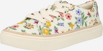 Sneaker low 'ALEX' TOMS pe bej / mai multe culori, Vizualizare produs