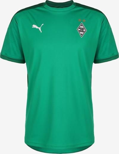 PUMA Trainingsshirt 'Borussia Mönchengladbach' in goldgelb / grün / smaragd / schwarz / weiß, Produktansicht