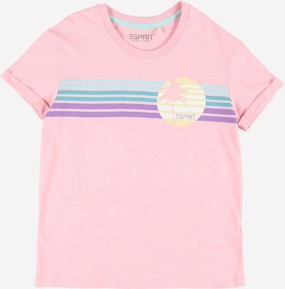 ESPRIT T-Shirt in hellblau / pastellgelb / jade / helllila / rosa, Produktansicht
