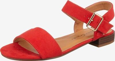 SuperCracks Riemchensandale 'Dedi' in rot, Produktansicht