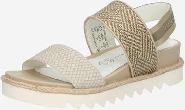 bugatti Sandals in Beige