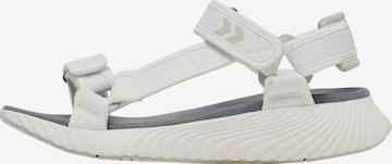 Sandales de randonnée Hummel en blanc