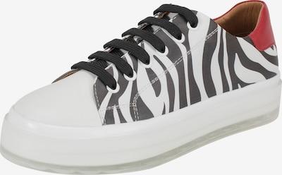 Ekonika Sneaker in schwarz / weiß, Produktansicht