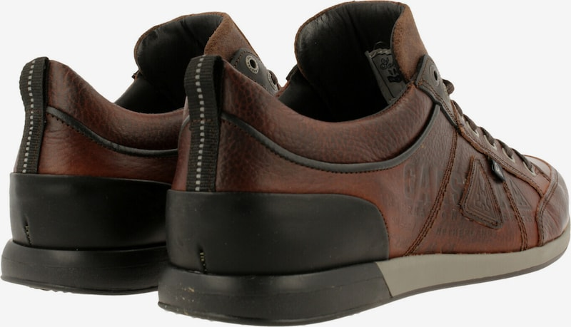 Gaastra Sneakers laag ' BAYLINE TMB ' in Bruin fvE8imH2