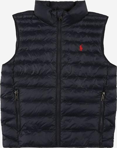 Polo Ralph Lauren Bodywarmer in de kleur Navy / Rood, Productweergave