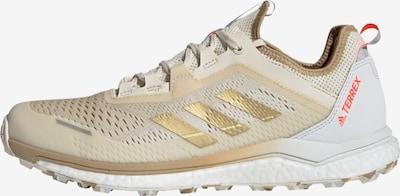 adidas Terrex Laufschuh 'Terrex Agravic Flow' in creme / gold / rot / weiß, Produktansicht