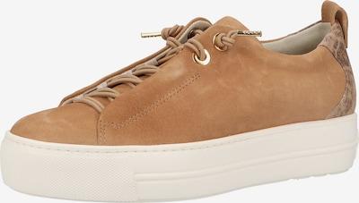 Paul Green Sneakers laag in de kleur Cognac / Lichtbruin / Donkerbruin, Productweergave