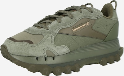 Reebok Classics Sneaker 'CL CARDI' in grün, Produktansicht