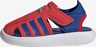 ADIDAS PERFORMANCE Claquettes / Tongs en bleu / rouge, Vue avec produit