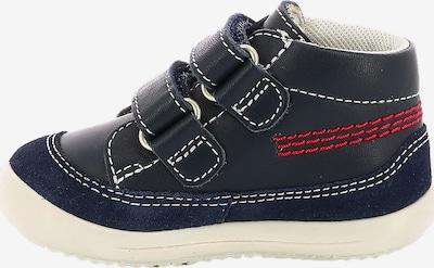KICKERS Schuh in navy / dunkelgrün / blutrot, Produktansicht