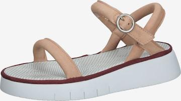 FLY LONDON Sandale in Beige