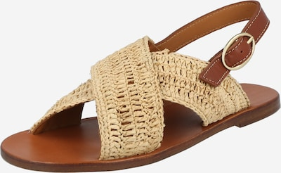 Vanessa Bruno Sandal in Beige / Chamois, Item view