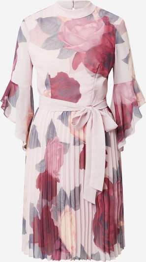 Chi Chi London Robe en vert pastel / rose / rose pastel / lie de vin, Vue avec produit
