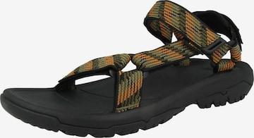 Sandales TEVA en vert