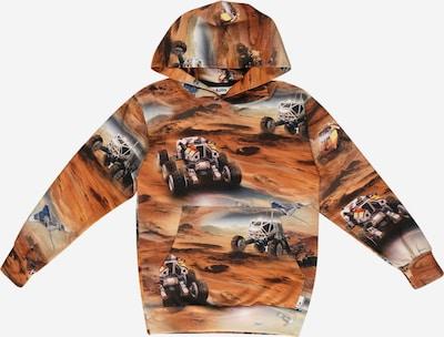 Tricou Molo pe maro / gri / alb, Vizualizare produs