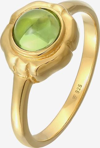 ELLI PREMIUM Ring in Goud