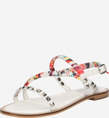 Dockers by Gerli Sandals in Mixed colors