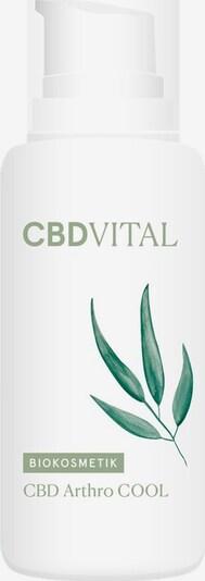 CBDVITAL Körperpflege 'CBD Arthro Cool' in weiß, Produktansicht