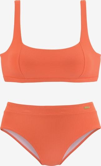 BUFFALO Bikini omāru, Preces skats