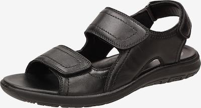 SIOUX Sandalen 'Lutalo-701' in de kleur Zwart, Productweergave