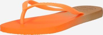 HAVAIANAS T-Bar Sandals in Orange