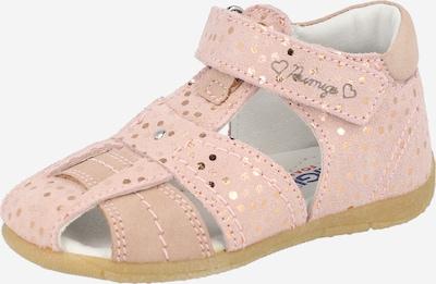 PRIMIGI Sandalias 'PIE 74105' en beige / rosa, Vista del producto