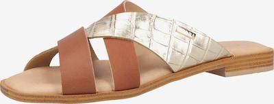 SCAPA Pantolette in braun / gold, Produktansicht