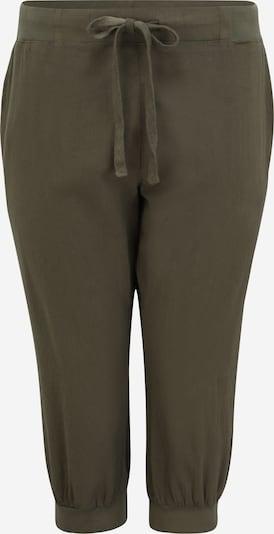 KAFFE CURVE Hlače 'Nana'   temno zelena barva, Prikaz izdelka
