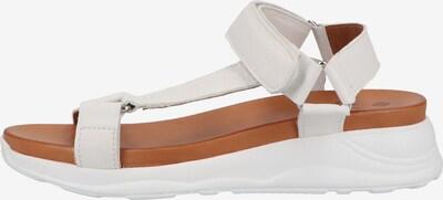 ILC Sandale in weiß, Produktansicht
