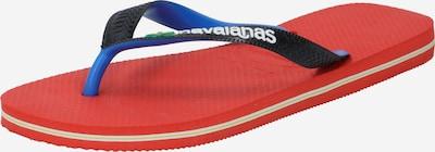 HAVAIANAS Zehentrenner 'BRASIL' in royalblau / hellgrün / rot / schwarz / weiß, Produktansicht
