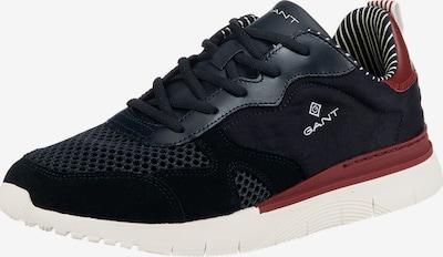 GANT Sneaker 'Mc Park' in dunkelblau / weinrot: Frontalansicht