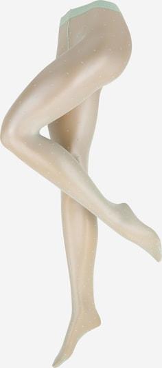 FALKE Fijne panty in de kleur Pastelgroen, Productweergave