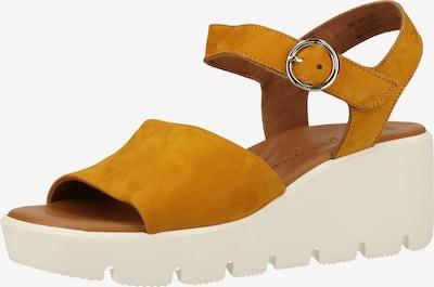 Paul Green Sandale in senf, Produktansicht