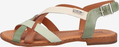 PIKOLINOS Sandalen in braun / grün / weiß, Produktansicht