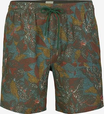 O'NEILL Surfaripüksid 'Tribe', värv roheline