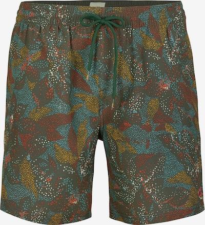Pantaloni scurți apă 'Tribe' O'NEILL pe albastru fumuriu / kaki / mai multe culori / roşu închis, Vizualizare produs