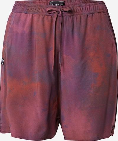 Iriedaily Bukser i mørkelilla / rød / rødviolet, Produktvisning