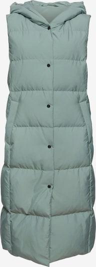 ESPRIT Bodywarmer in de kleur Groen, Productweergave