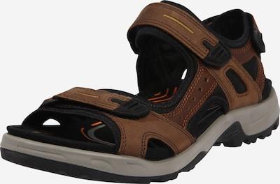 ECCO Sandały trekkingowe w kolorze brązowym, Podgląd produktu