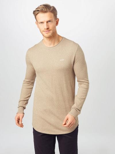 HOLLISTER Pullover in beige: Frontalansicht