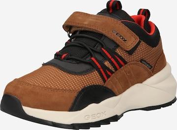 GEOX Sneaker 'HEEVOK B.B ABX' in Braun