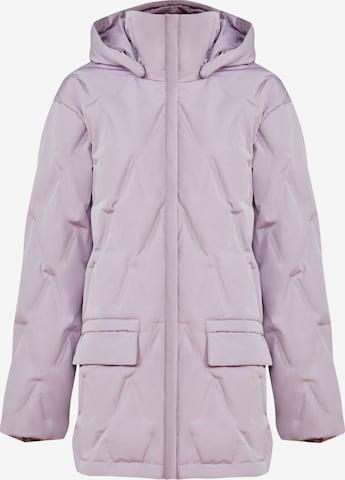 Finn Flare Winter Jacket in Purple