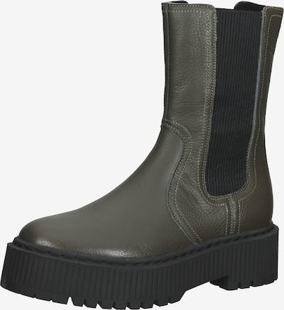 STEVE MADDEN Laarzen in de kleur Donkergroen / Zwart, Productweergave