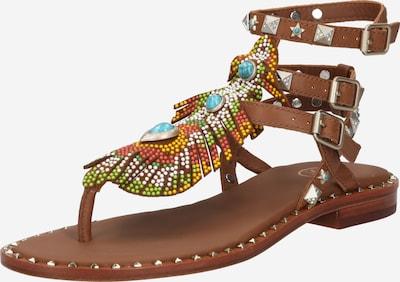 ASH Sandale 'Pandora' in braun / mischfarben, Produktansicht