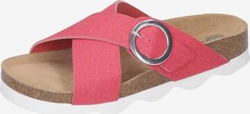 DR. BRINKMANN Mules in Pink