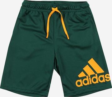Pantaloni sport de la ADIDAS PERFORMANCE pe verde