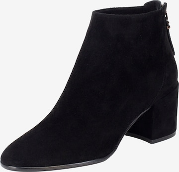 Ekonika Ankle Boots in Black